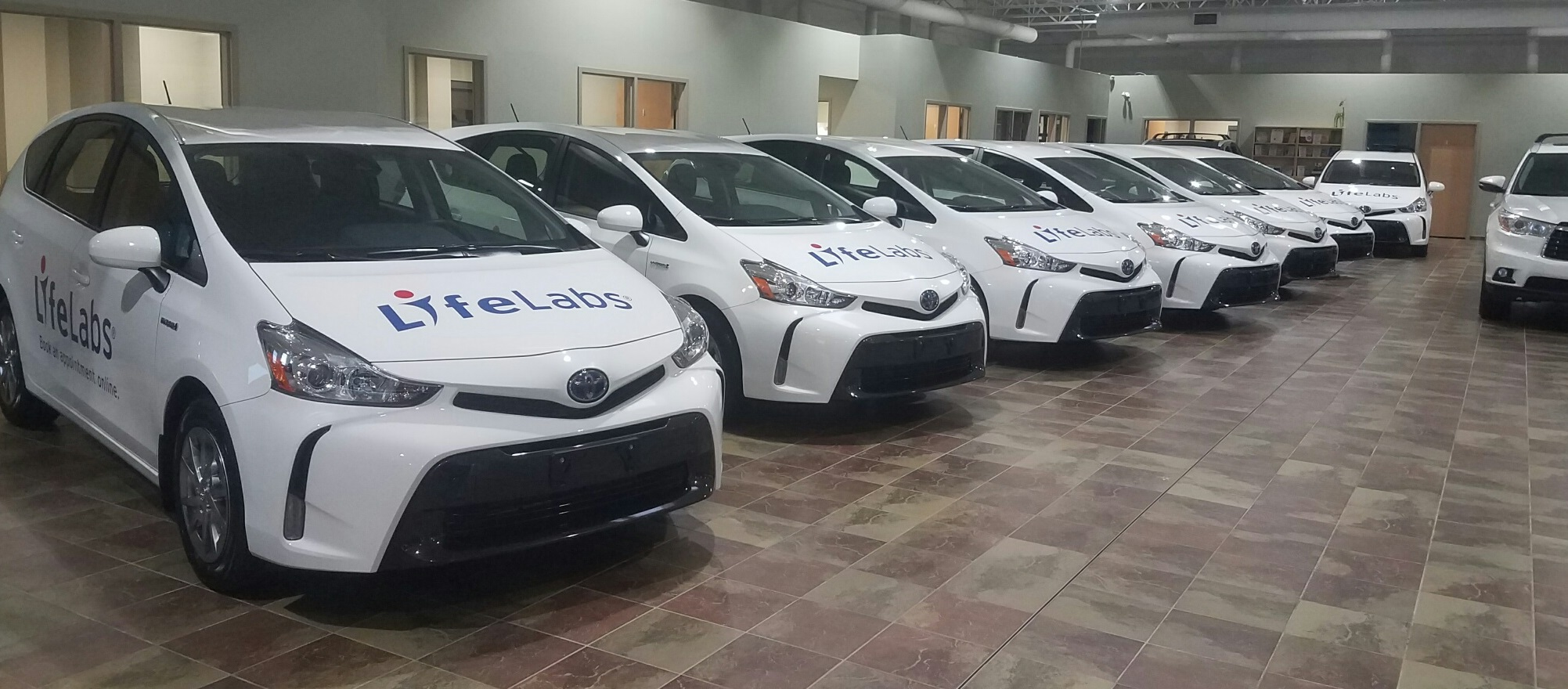 Prius Fleet Graphics