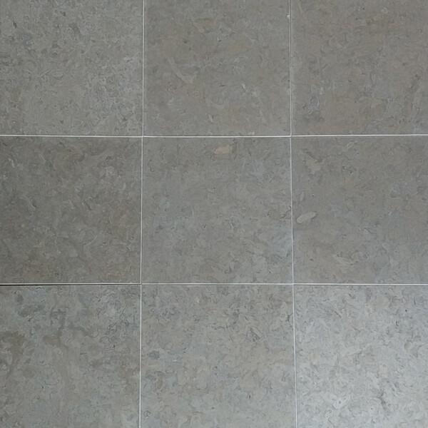 Benjamin-Gray Honed 12 x 12 6.79-sq-ft