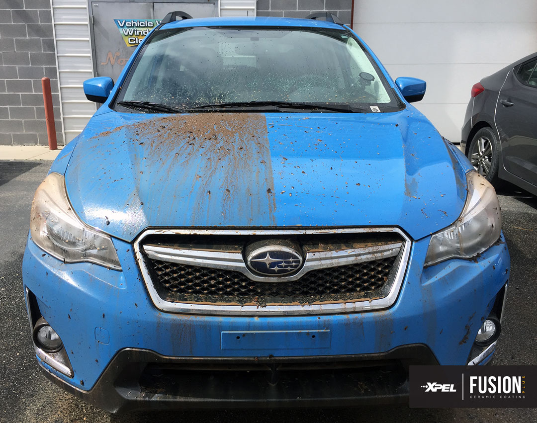 XPEL-FUSION-PLUS-ceramic-coating-engineering-explained-subaru-50-50-1