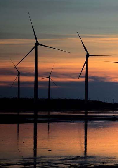 Wind Farms - Texas Lone Star Title