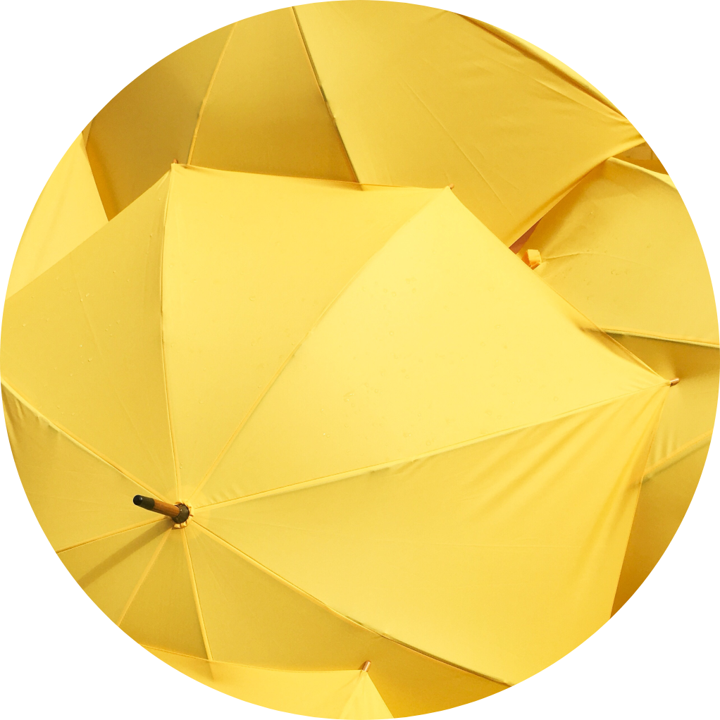 Image of yellow umbrellas