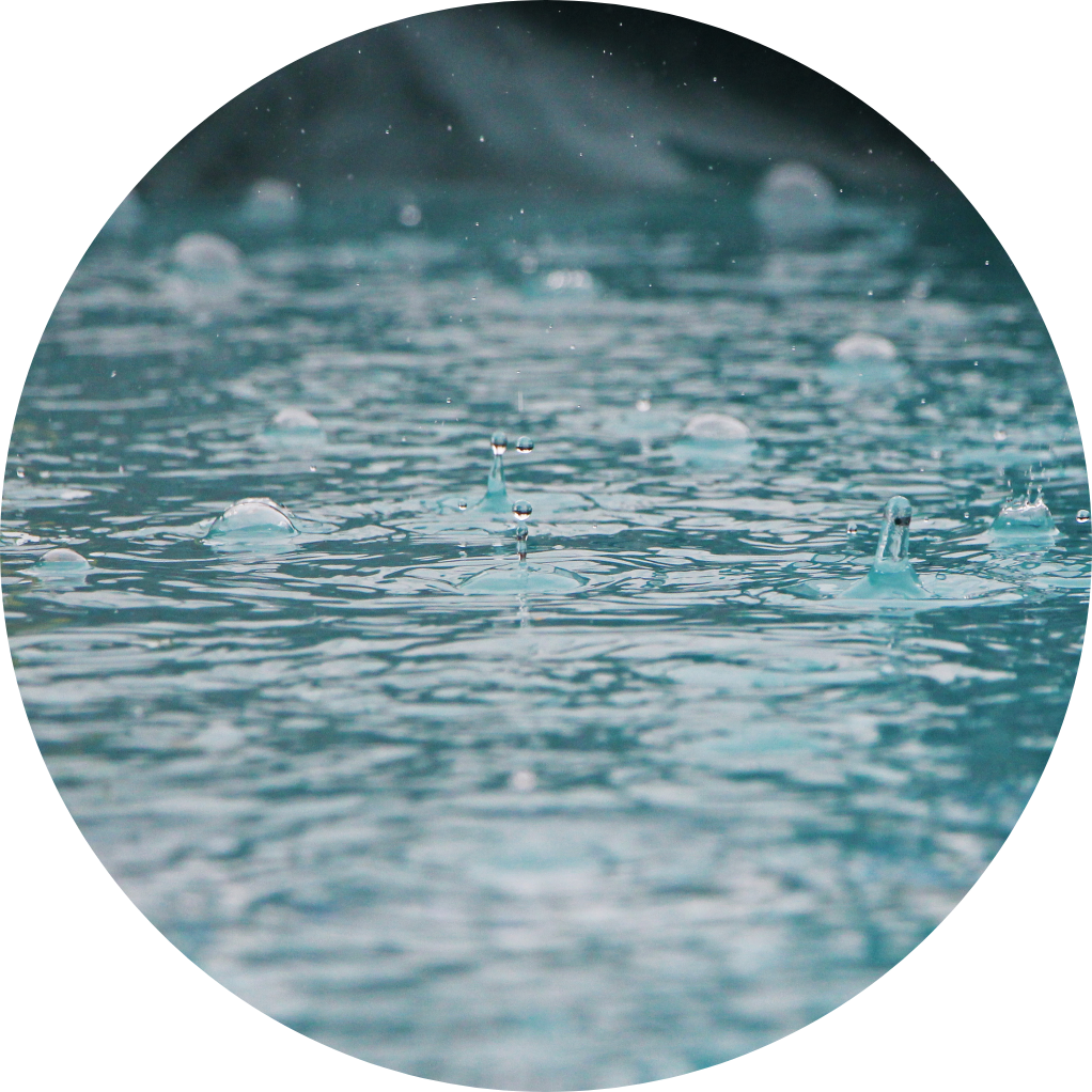 Image of rain collecting in a puddle