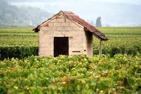 France Chardonnay
