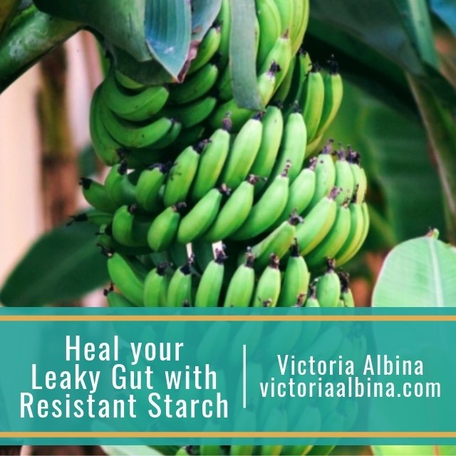 Heal your leaky gut with resistant starch