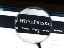 Celia Wirth, build your Word Press website