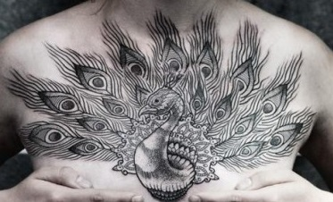 peacock-feather-tattoo-chest