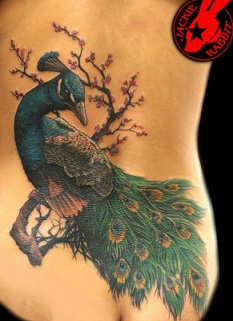 peacock-feather-tattoo-cover-up