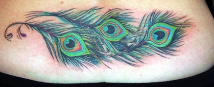 peacock-feather-tattoo-cover