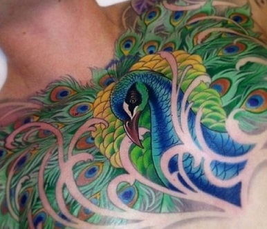 peacock-tattoos-men-chest