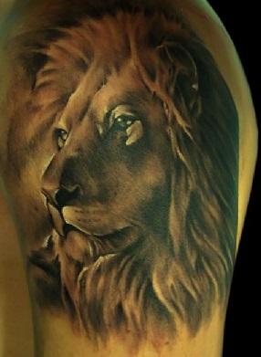 shoulder-tattoos-men-lion-portrait