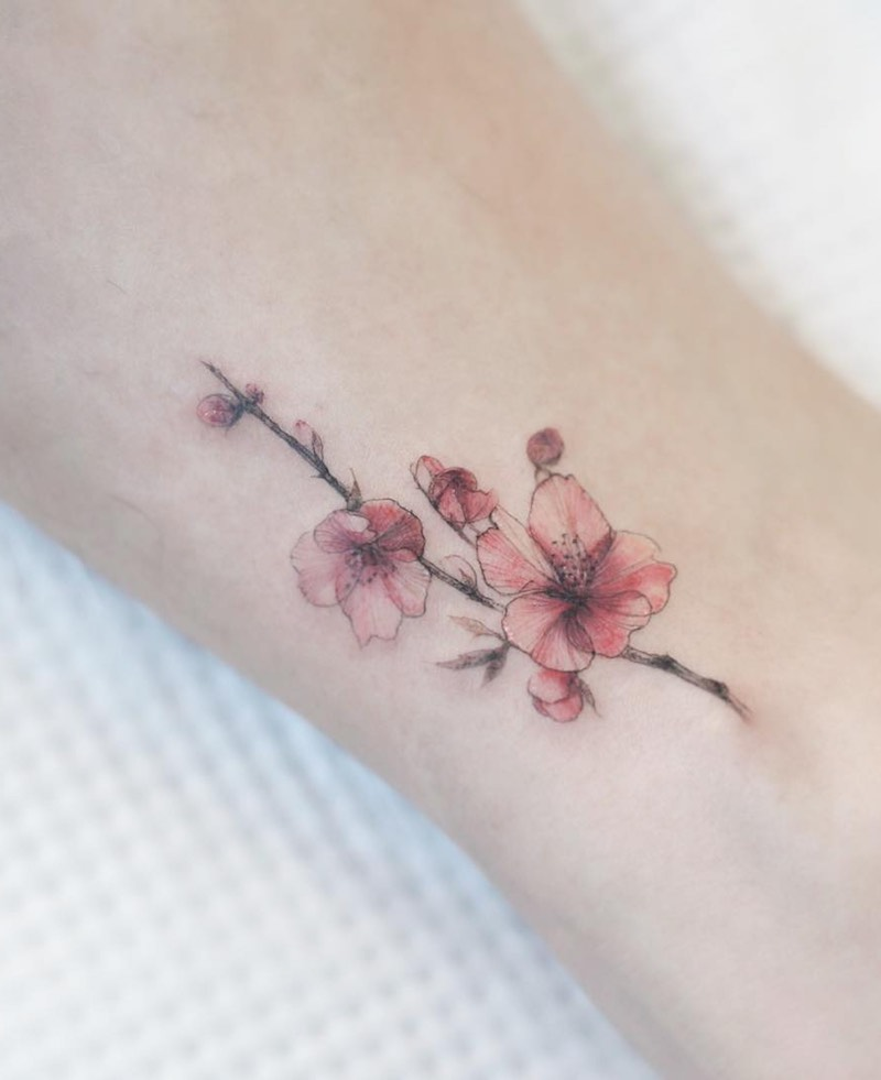 Cherry Blossom Tattoo by Tattooist Flower