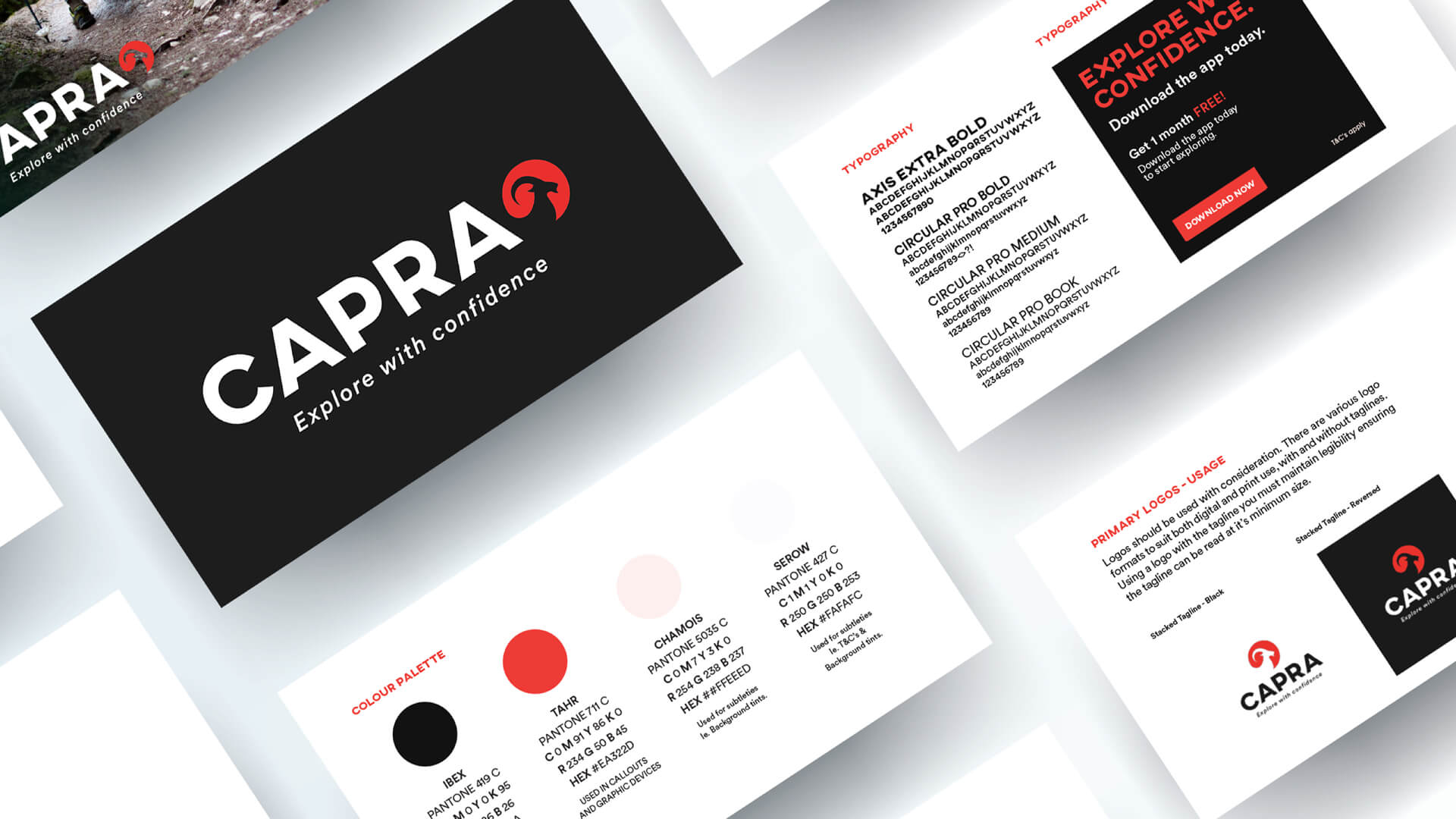 Marketing and Design Agency - Poloko - Northern Beaches - Capra