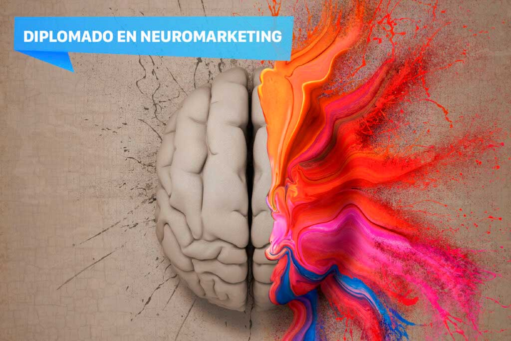 Diplomado-Neuromarketing-1080-x-720-02-1024x683-(1)