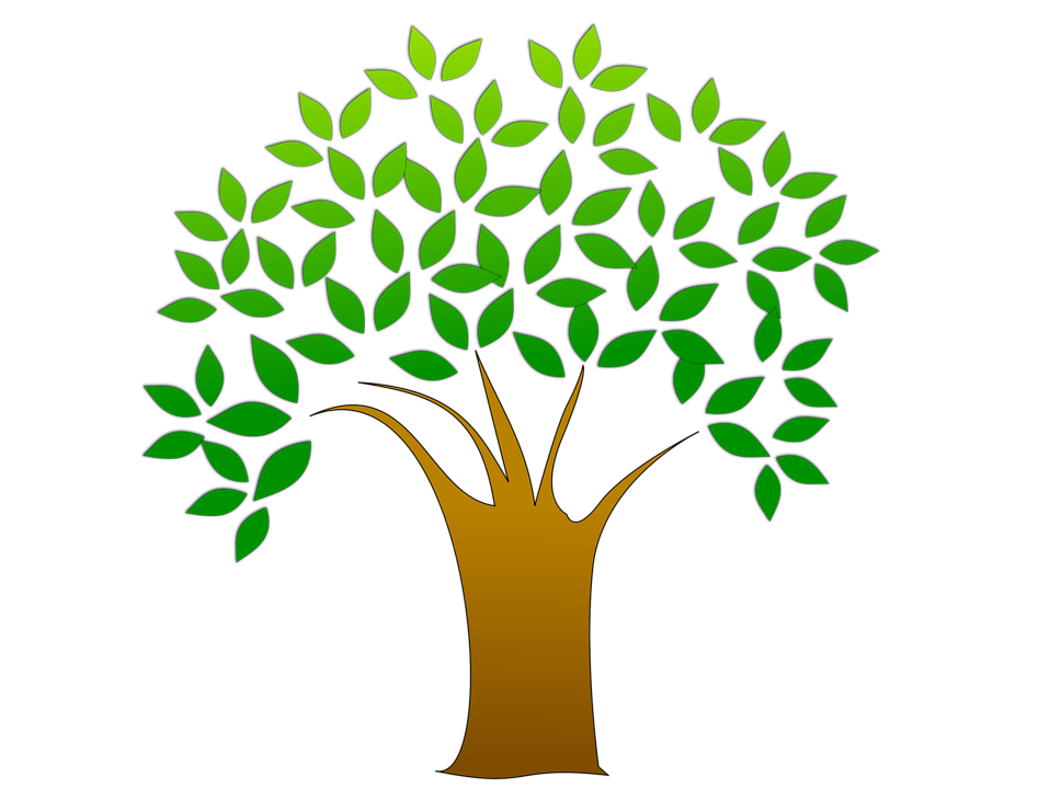 Purchase a tree to support Spirit Walk Journey