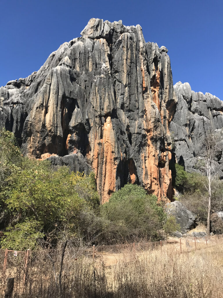 Limestone outcrop at Chillagoe