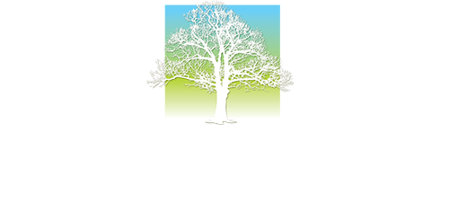 Metro Community Health Center logo