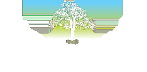 Metro Community Health Center logo
