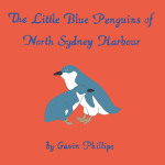 Little Blue Penguins of North Sydney Harbour