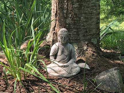 holistic retreats in asheville nc