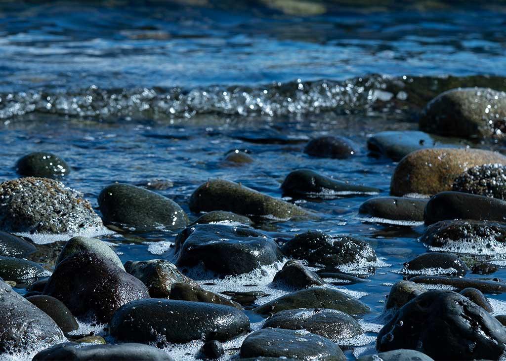 About Canadian Sea Salt