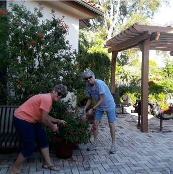 Garden Club of Cape Coral volunteers working at the library butterfly garden