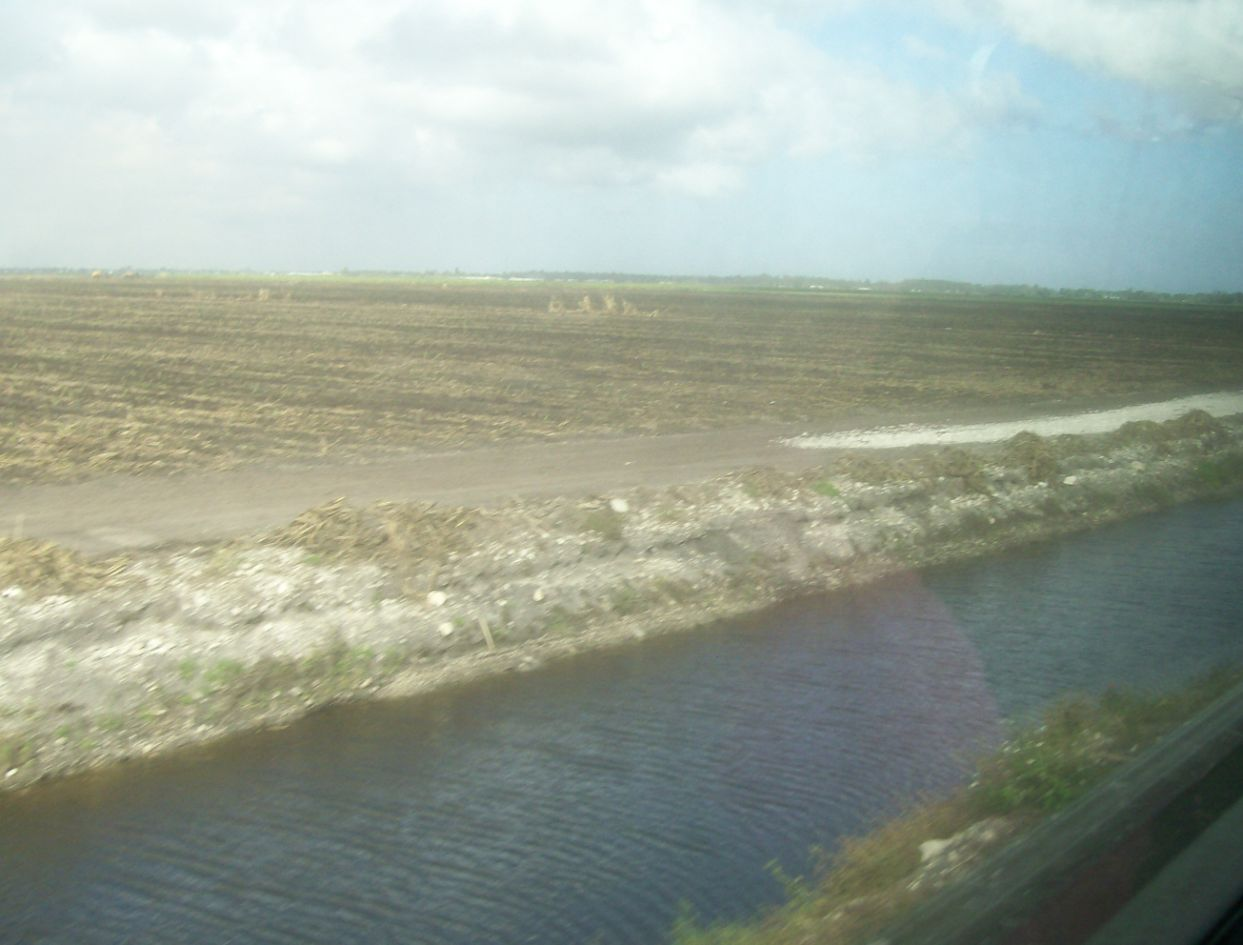 irrigartion canal