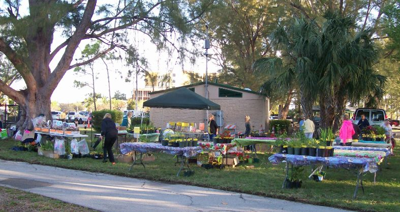 Plant Sale Setup