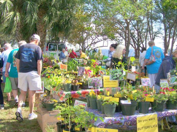 Plant Sale Underway