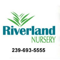 Riverland Nursery Newsletter November 2019