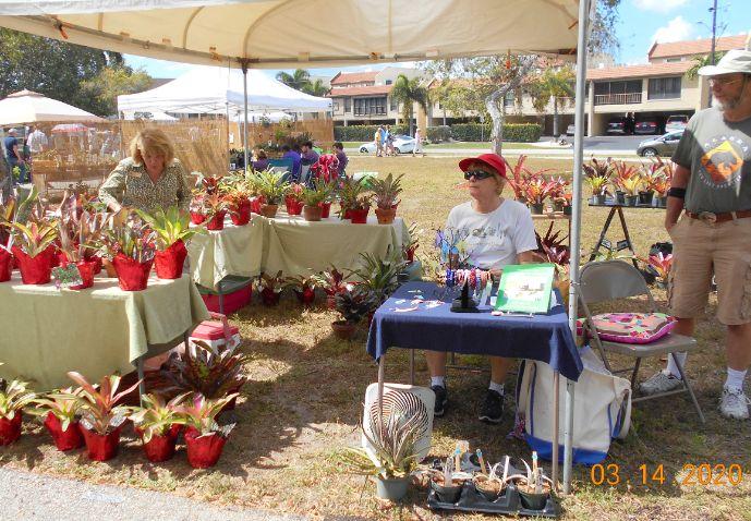 Bromeliads Vendor