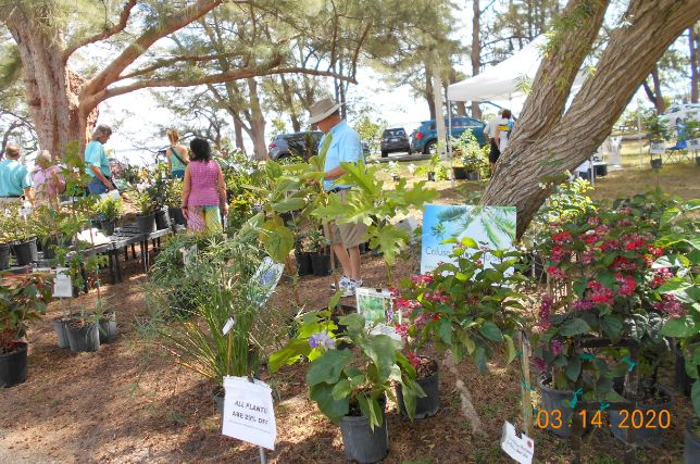 Calusa Palms Nursery