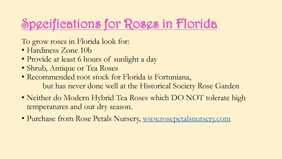 October Meeting 2020 - Rose Garden - 19