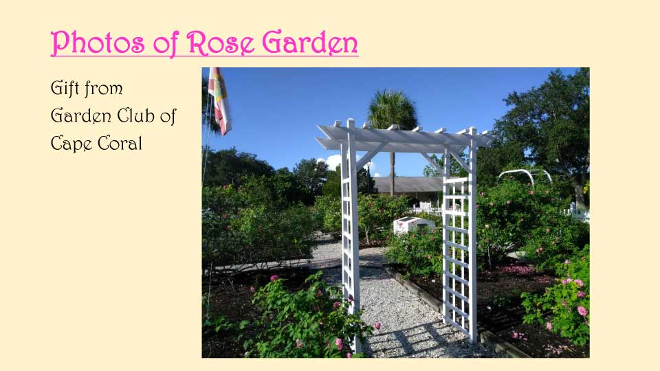 October Meeting 2020 - Rose Garden - 21