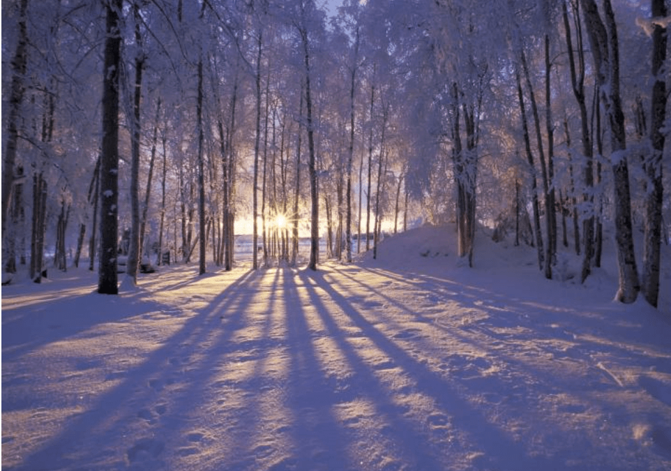 The Return of the Light & The Winter Solstice: Let the seasons guide you to feeling more calm.