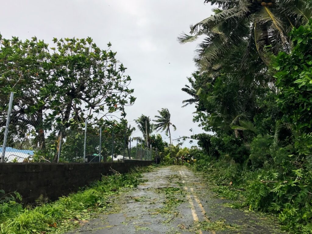 Road Strewn with Debris and Downed foliage from Cyclone Gita