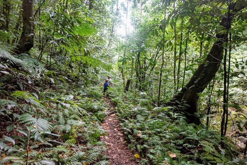 Hiking to Nu'uuli Falls
