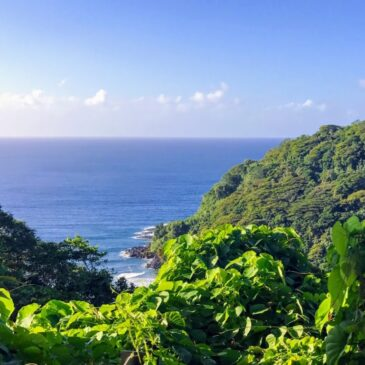 A New Life in American Samoa