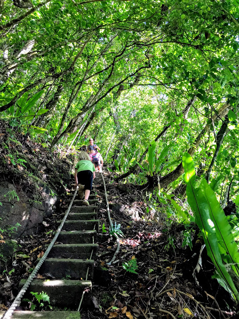 Kids hiking the Tuafanua Trail