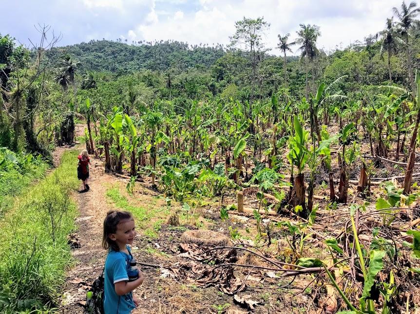 Children hiking through a banana plantation