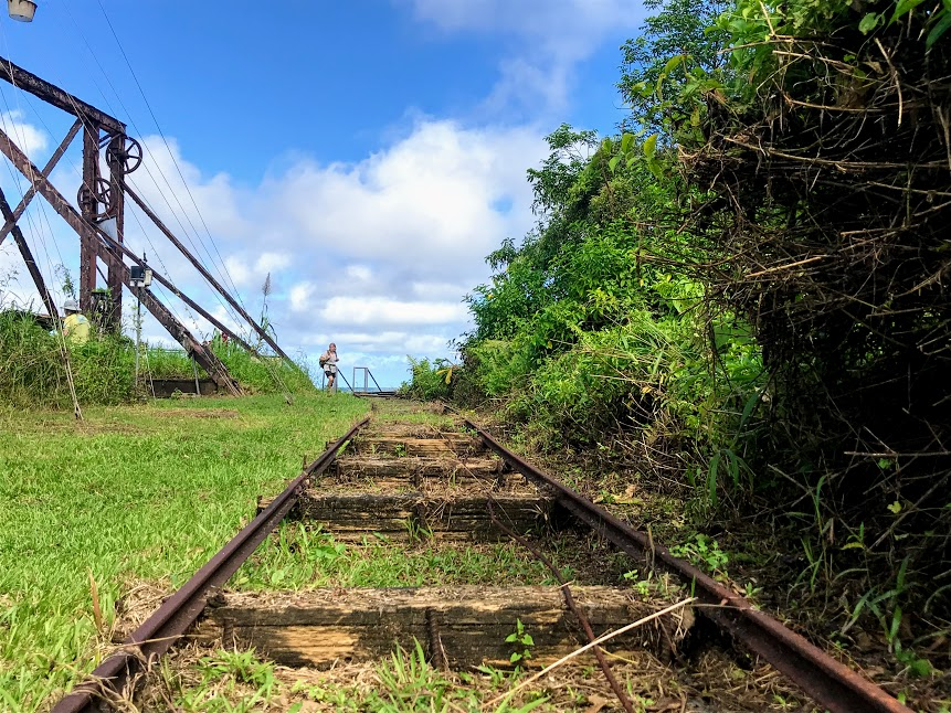 Abandoned Tram Rails at the Top of Mount Alava