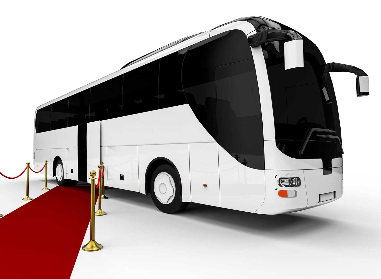Party Bus Tampa - Photo of a bus with a red carpet in front