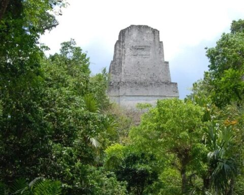 Ancient Maya Built Sophisticated Water Filters Using Natural Materials