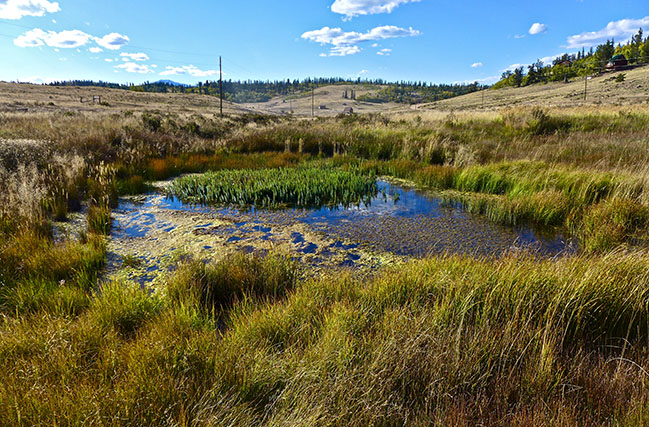 SOLD – 3 Acres with an Active Spring!!! Park County, CO