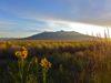 seller-financed-land-in-costilla-county-colorado
