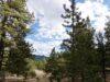 cripple-creek-co-land-for-sale-