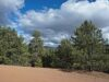 for-sale-land-in-cripple-creek-co