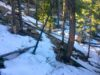 evergreen-co-land-for-sale-
