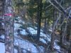 cheap-property-for-sale-in-evergreen-co