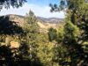 -cheap-land-in-evergreen-co