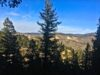 seller-financed-land-in-clear-creek-county-